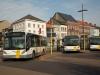 belgie31