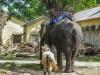 indochina-10-30-okt-2012-527